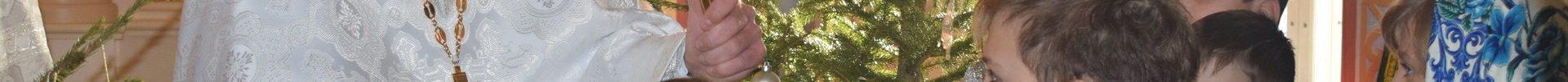 Рождественская коляда на приходе Преображенского храма д. Спас-Каменка